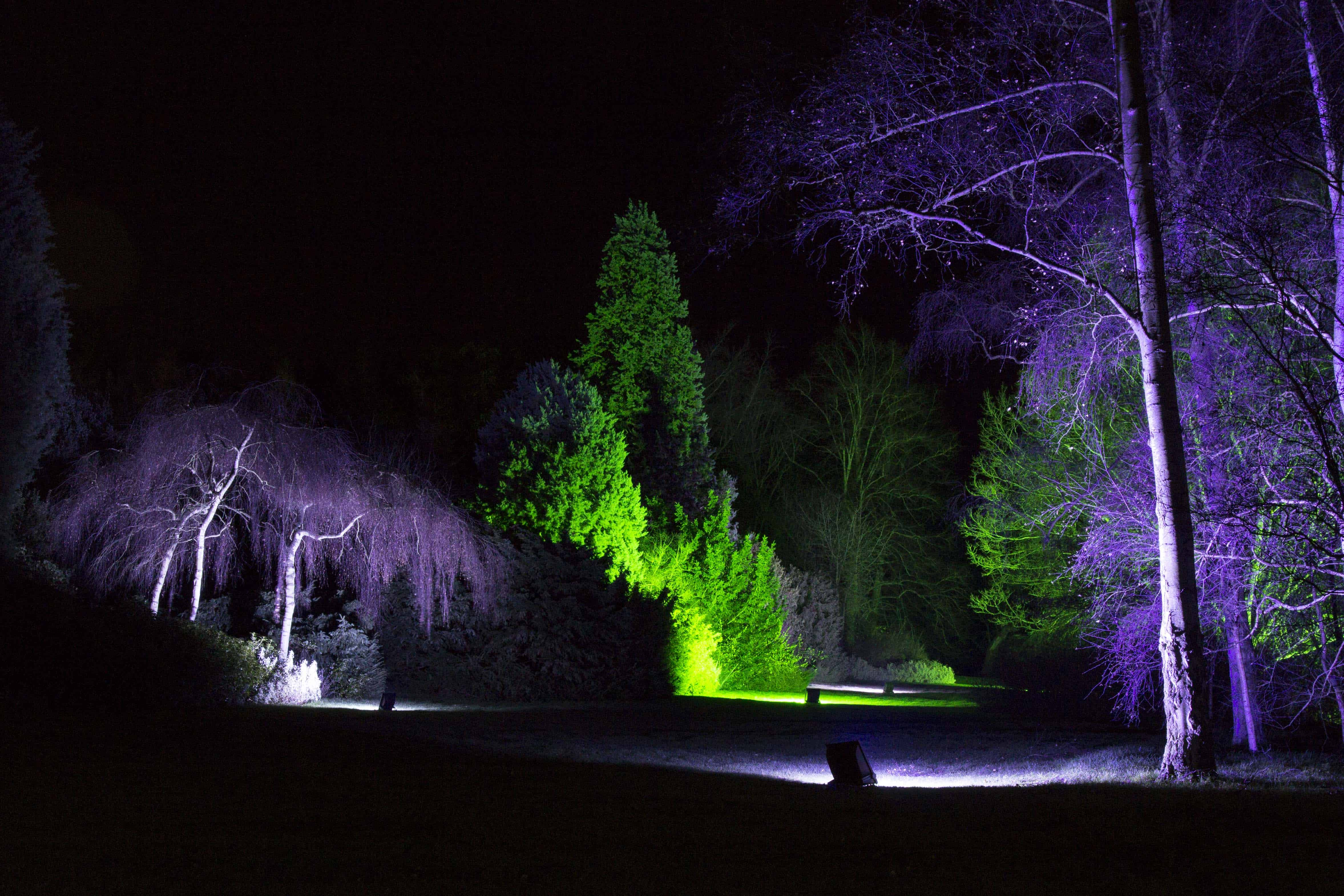 Anglesey Abbey Winter Lights 2015 -06